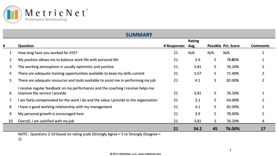 Sample Agent Job Satisfaction Survey  Metricnet Performance